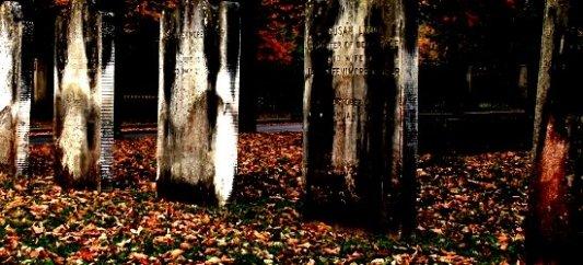 Oc�ltame entre las tumbas