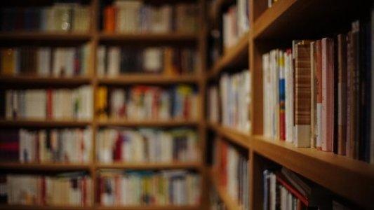 Imagen de las estanterías de una librería repletas de libros