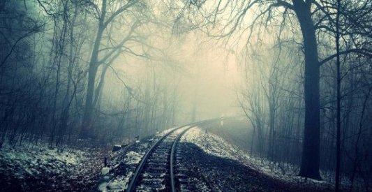 Vías del tren que llevan a un bosque sombrío y oscuro