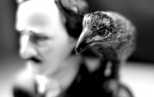 Imagen en blanco y negro de un busto de Poe con un cuervo en el hombro.