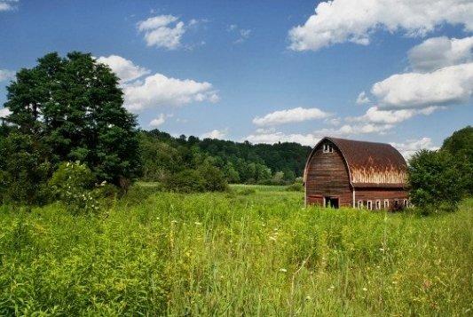 Foto de un granero abandonado en medio de un paisaje de primavera.