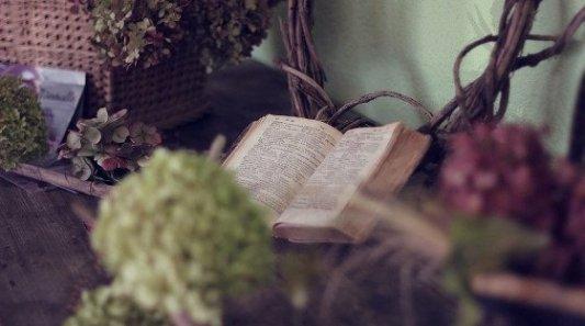 Libro antiguo en una mesa dentro de un jardín solitario.