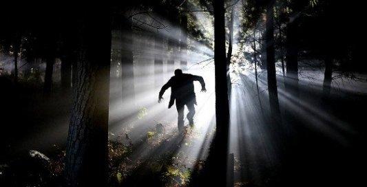 Hombre perdido en el bosque de noche a contraluz.