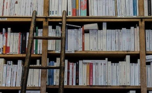 Estantería con libros y una escalera.