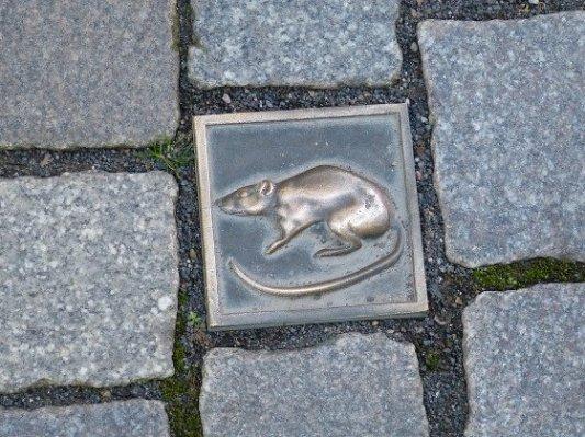 Placa de una rata en los adoquines de Hamelin.