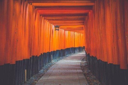Camino cubierto de de portales de madera en Japón.