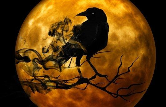 Cuervo envuelto en sombras con una luna detrás.