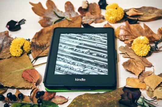 Lector de ebooks kindle rodeado de hojas secas.