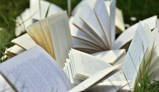 Libros abiertos en un jardín.