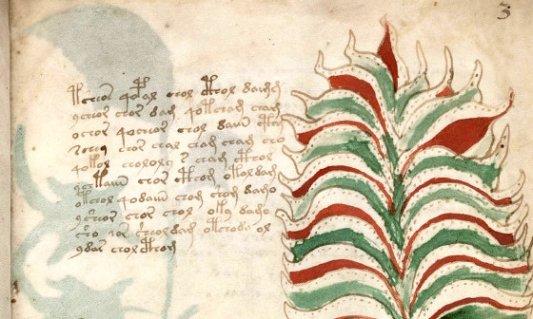 Detalle de una de las páginas de Manuscrito Voynich.