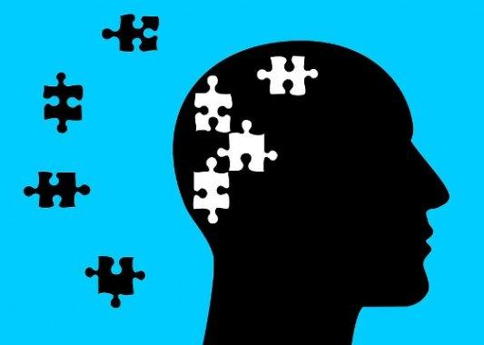 El puzle de nuestra mente.