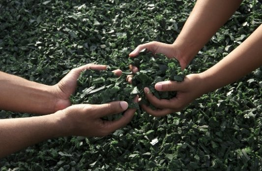 Niños trabajando con reciclaje.