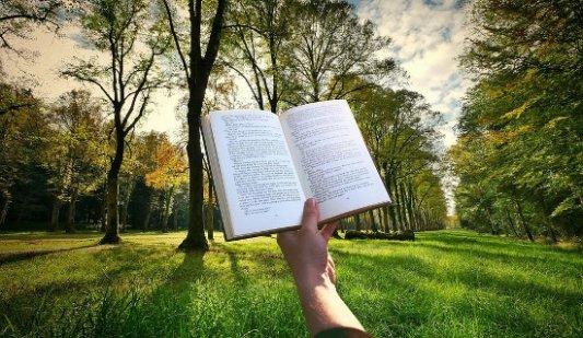 Libro abierto en un bosque.