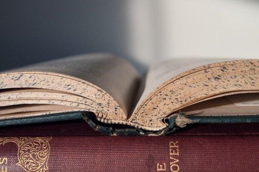 Libro antiguo con moho.