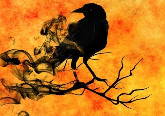 Imagen de un cuervo envuelto en humo.