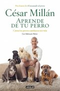 Aprende de tu perro