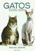 Gatos. Cómo son