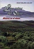 Las rutas del olivo en Jaén (Masaru en el Olivar I)