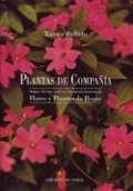 Plantas de compañía